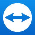 TeamViewer 13破解版 绿色版