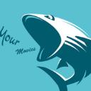 鲨鱼影视 v5.08去广告安卓版
