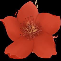 小红花直播音效助手 v1.0绿色版