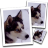 SimilaEnlarger(图片无损放大工具) v0.9.0免安装版