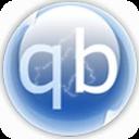 BT下载软件(qBittorrent绿色增强版) v4.3.1.11绿色便携版