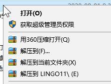 lingo软件