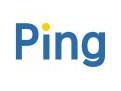 批量Ping工具 v2.0中文版