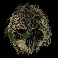 森林游戏破解补丁 v2.0最新版
