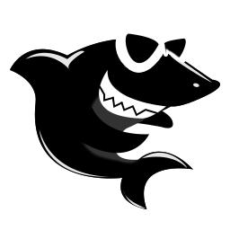 黑鲨装机大师 V2021纯净版