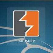 BurpSuite(网络渗透测试软件) v3.0.04 中文破解版