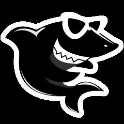 黑鲨装机大师去广告(超好用) V2021纯净版