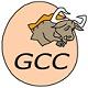 GCC编译器 v8.3官方版