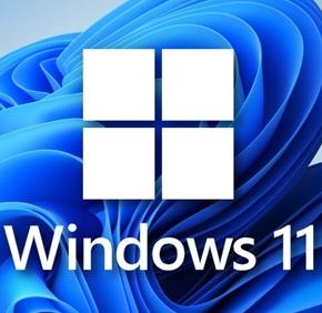 Windows11精简版优化版 (22000.100)