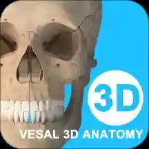 维萨里3D解剖 安卓版v5.2.3