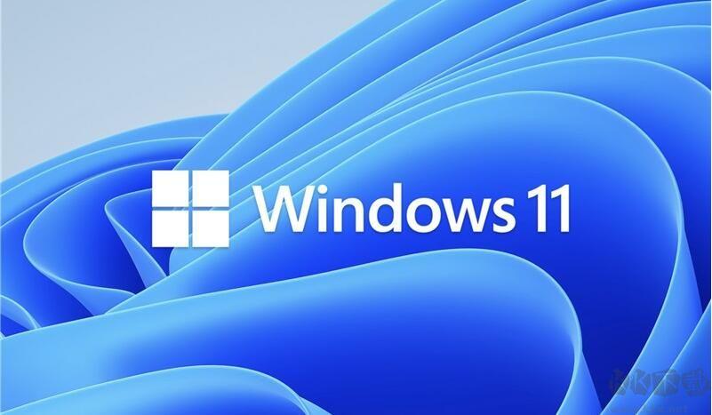 微软Win11正式版64位专业版